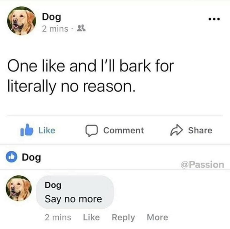 dog liking own Facebook post about barking if they get likes