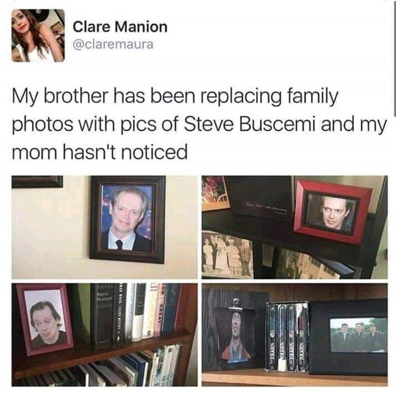 Tweet about replacing family photos with Steve Buscemi without mom noticing