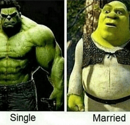 """meme about what marriage does to your body with picture as the Hulk captioned """"single"""" and picture of Shrek captioned """"married"""""""