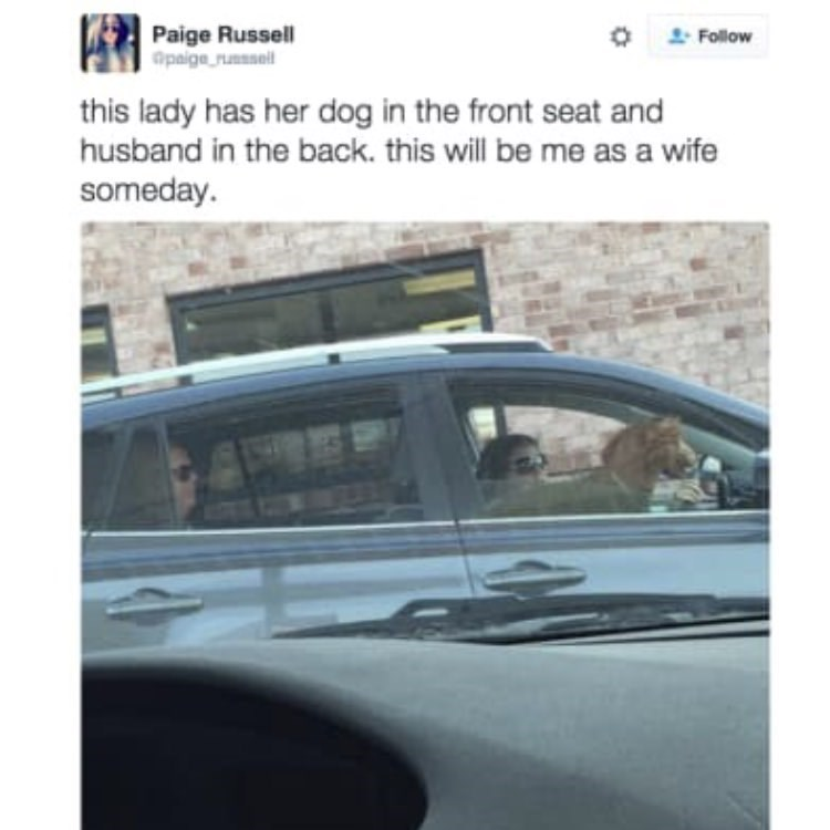 """Caption that reads, """"This lady has her dog in the front seat and husband in the back. This will be me as a wife someday"""" above a pic of the stated scenario"""