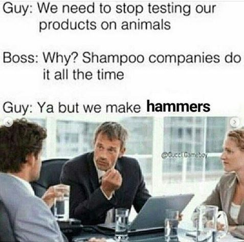 hammer company discuss testing products on animals with picture of staff meeting