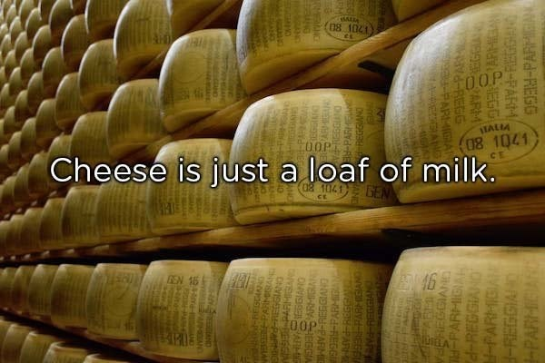 meme image of cheese and a description that cheese is just a loaf of milk