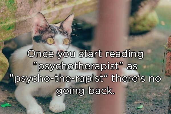 "Cat - Once you start reading ""psychotherapist"" as ""psycho-the-rapist"" there's no going back 00"