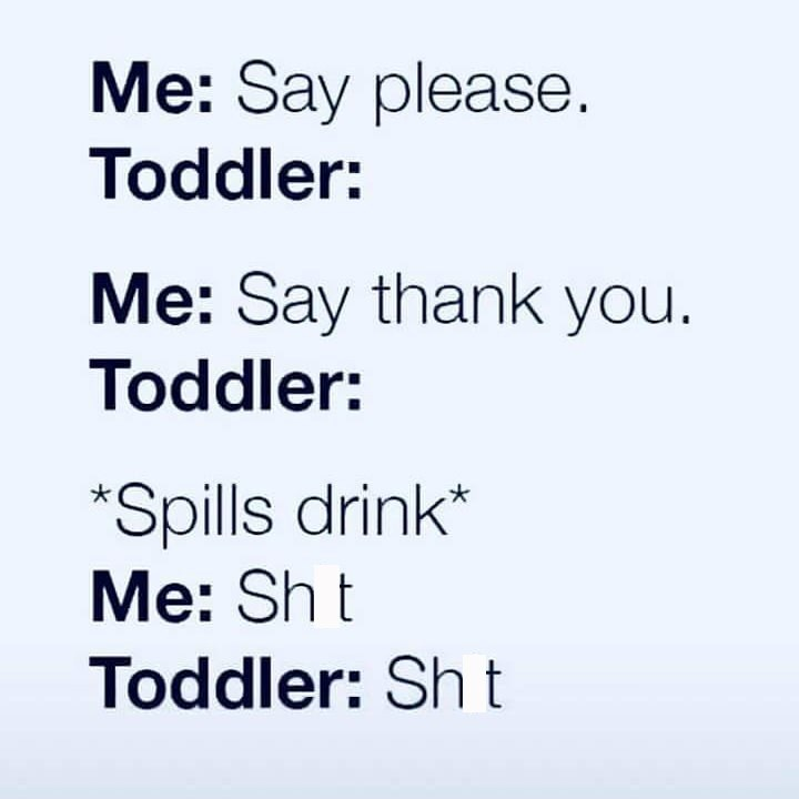 meme about toddlers repeating bad words but not learning manners