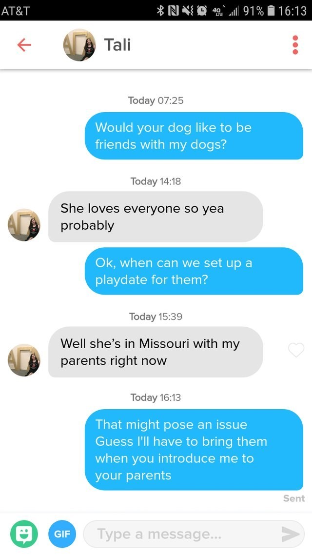 funny tinder - Text - O 9 91% 16:13 AT&T Tali Today 07:25 Would your dog like to be friends with my dogs? Today 14:18 She loves everyone so yea probably Ok, when can we set up a playdate for them? Today 15:39 Well she's in Missouri with my parents right now Today 16:13 That might pose an issue Guess l'll have to bring them when you introduce me to your parents Sent Type a message... GIF