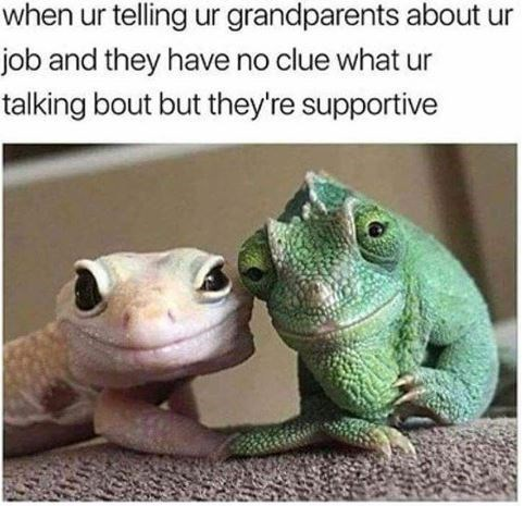 meme about grandparents being supportive with picture of kind looking lizards holding hands