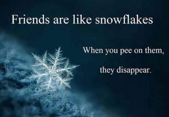 meme image of a snowflake, that friends are like snowflakes and when peed on they disapear