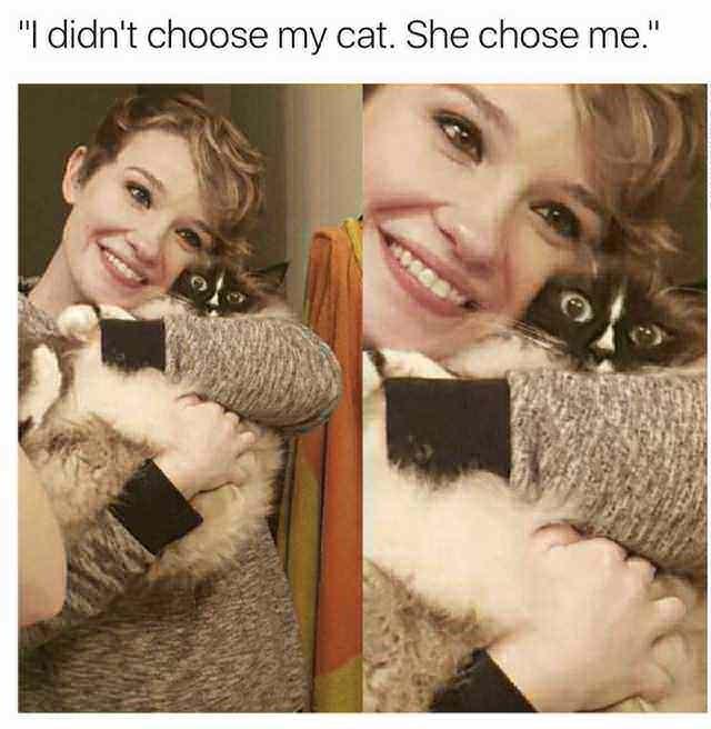 meme cat image of woman hugging cat and cat looks scared