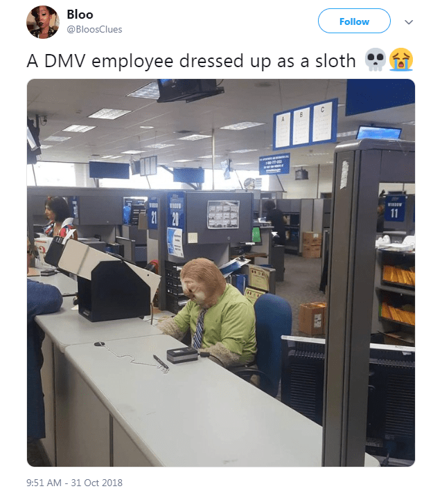 Product - Bloo Follow @BloosClues A DMV employee dressed up as a sloth 11 21 20 9:51 AM 31 Oct 2018