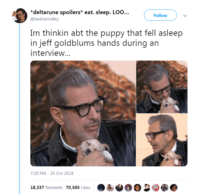 Face - *deltarune spoilers* eat. sleep. L00... Follow @lesbianridley Im thinkin abt the puppy that fell asleep in jeff goldblums hands during an interview... 7:20 PM -25 Oct 2018 18,337 Retweets 70,565 Likes
