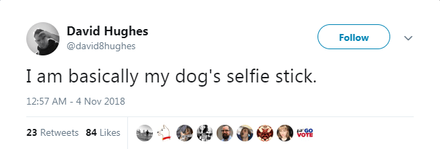 Text - David Hughes Follow @david8hughes I am basically my dog's selfie stick. 12:57 AM - 4 Nov 2018 23 Retweets 84 Likes GO