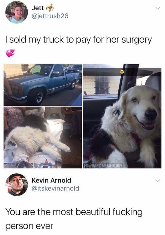 Tweet from person who sold truck to pay for dog's surgery