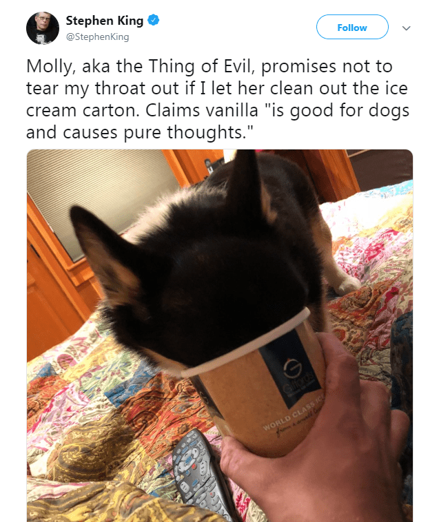 """Selfie - Stephen King @StephenKing Molly, aka the Thing of Evil, promises not to tear my throat out if I let her clean out the ice cream carton. Claims vanilla """"is good for dogs and causes pure thoughts."""" Follow Nate Gords WORLD CLASS"""