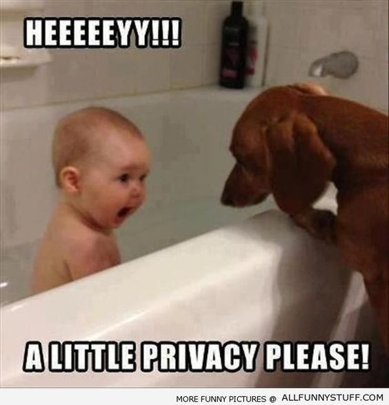 Photo caption - HEEEEEYY!!! ALITTLE PRIVACY PLEASE! MORE FUNNY PICTURES ALLFUNNYSTUFF.COM
