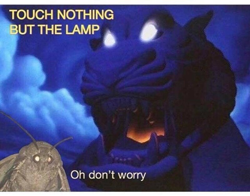 moth meme about touching nothing but the lamp in the cave of wonders in Aladdin