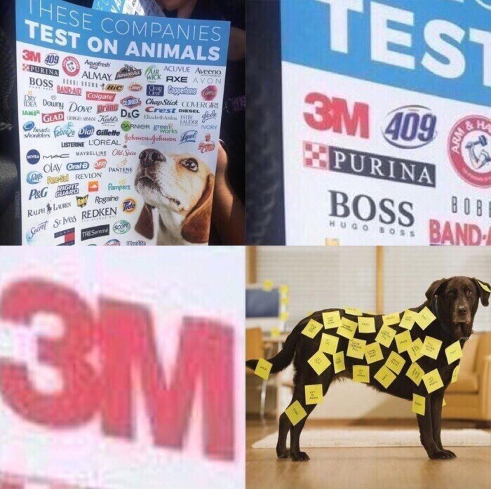 company 3M listed as testing on animals and picture of dog covered in sticky notes