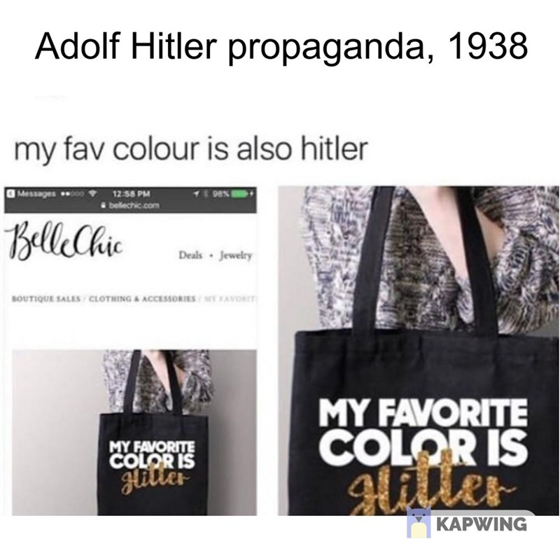 "fake history meme about Hitler propaganda with picture of bag saying ""my favorite color is glitter"""