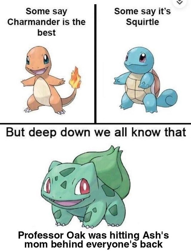 Cartoon - Some say it's Squirtle Some say Charmander is the best But deep down we all know that Professor Oak was hitting Ash's mom behind everyone's back