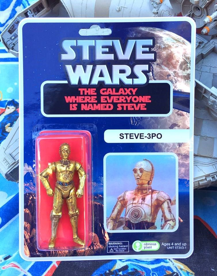 Action figure - STEVE WARS THE GALAXY WHERE EVERYONE IS NAMED STEVE STEVE-3PO WARNING: choking hazard obvious plant Ages 4 and up UNIT 5T3V3-1 OgessuogV ne Steve
