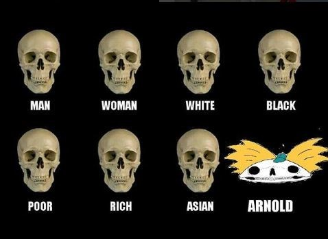 Pics of skulls representing different types of people, ending with Arnold from 'Hey Arnold's' football-shaped skull
