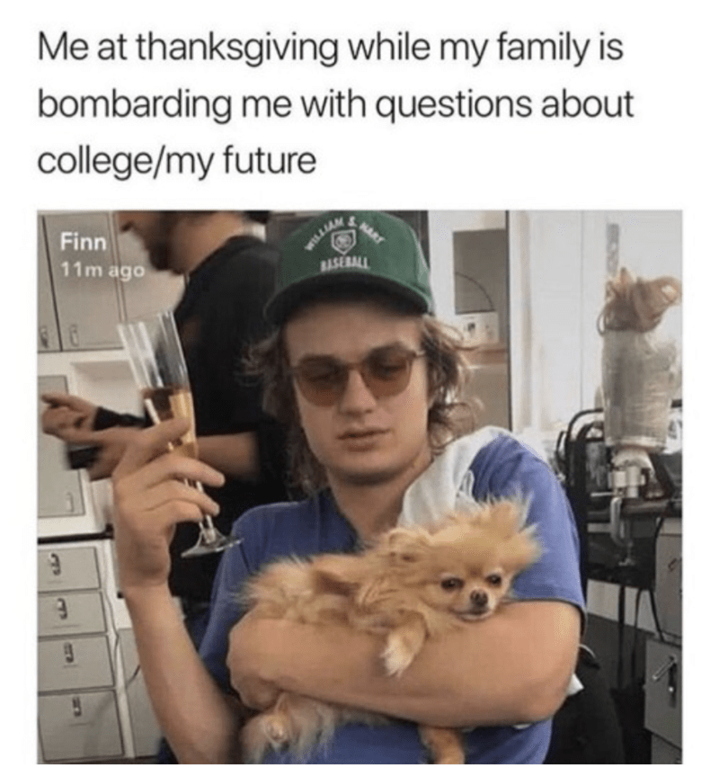 "Caption that reads, ""Me at Thanksgiving while my family is bombarding me with questions about college/my future"" above a pic of Joe Keery holding a little dog and a glass of champagne while looking frazzled"
