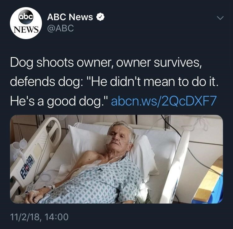 tweet post about a woman surviving getting shot by her dog and then forgiving him by: @ABC
