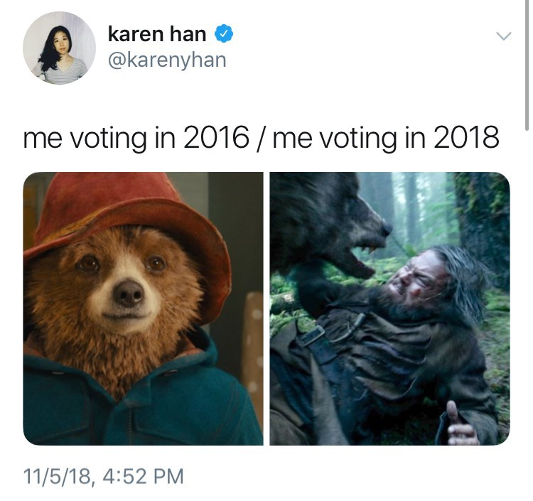 voting in 2016 vs voting in 2018 meme with pictures of Paddington vs bear from The Revenant