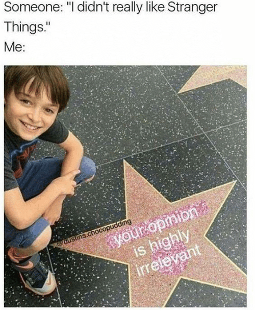 meme about people who didn't like Stranger Things being irrelevant with picture of Noah Schnapp by Hollywood Star