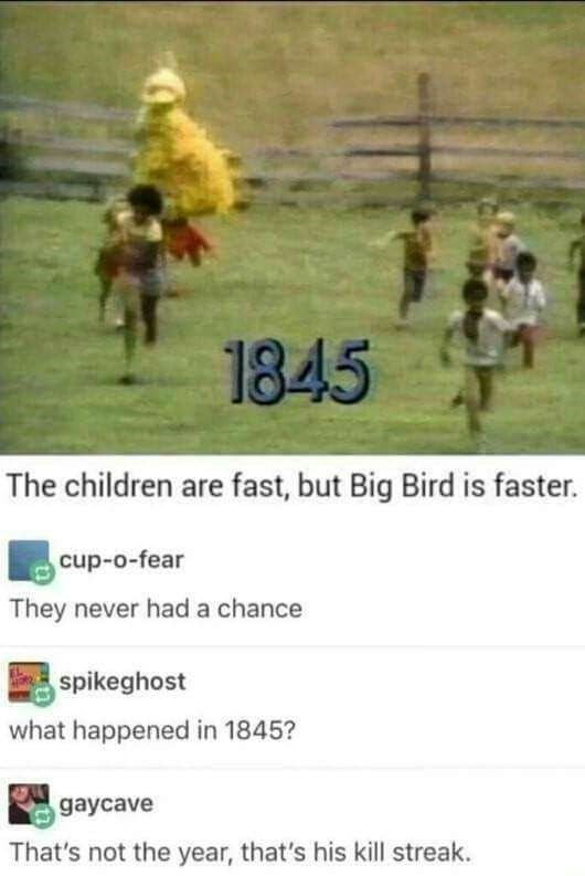 meme about Big Bird chasing and killing children with 1845 being its kill streak