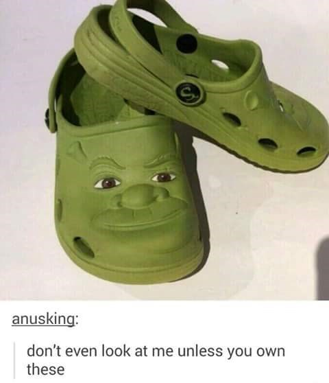 "Pic of a pair of Crocs that have Shreks face in them above a Tumblr comment that reads, ""Don't even look at me unless you own these"""
