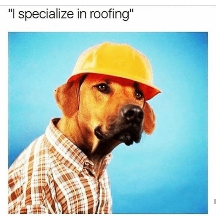 meme image of a dog wearing a hard hat and he specializes in roofing