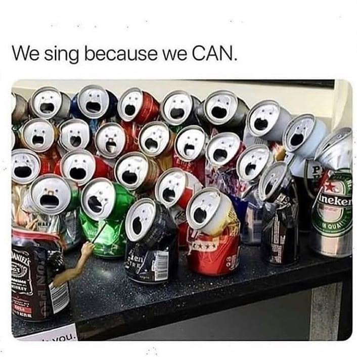 meme image of soda cans all saying we sing because we CAN