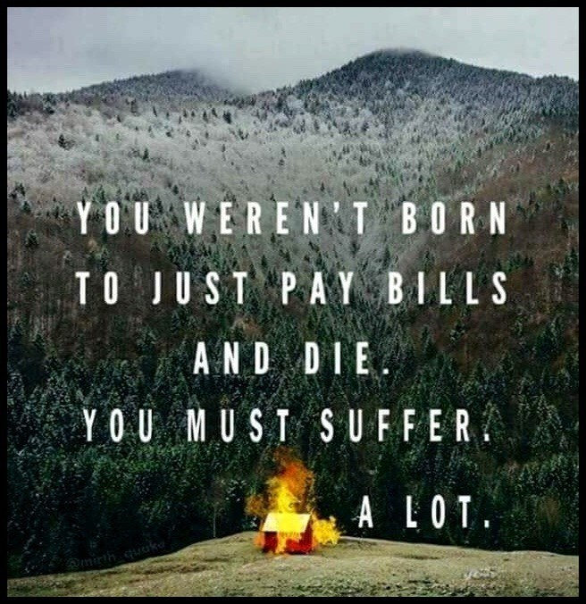 meme text about suffering a lot due to not being born to just pay bills