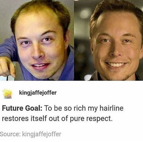"Tumblr caption that reads, ""Future goal: to be so rich my hairline restores itself out of pure respect"" above pics of young Elon Musk with a receding hairline next to a pic of him now with a normal hairline"