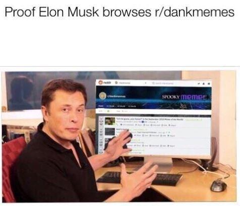 meme of elon musk browsing through dankmemes