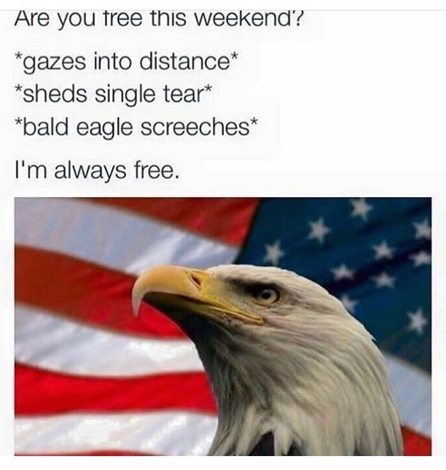 meme about being free on the weekend with picture of eagle over US flag background
