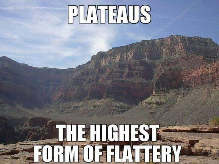 pun about plateaus being the highest form of flattery