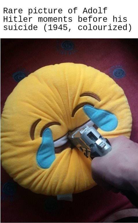 """picture of crying laughing emoji pillow squeezed by gun captioned """"Hitler's last moments"""""""