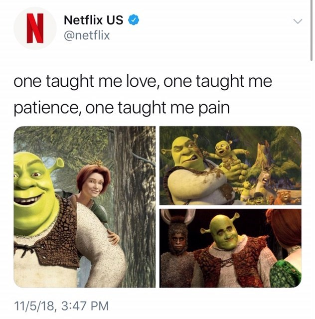 thank you, next meme about the Shrek movies by: @netflix