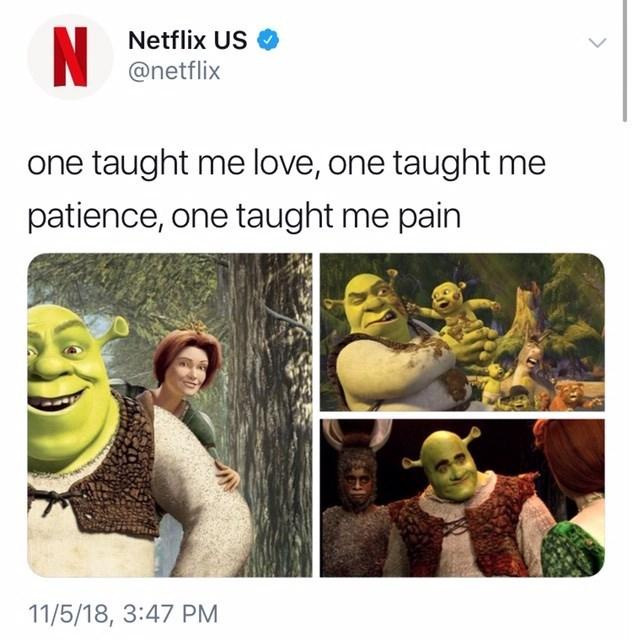 thank you, next meme about the Shrek movies by: @netflix