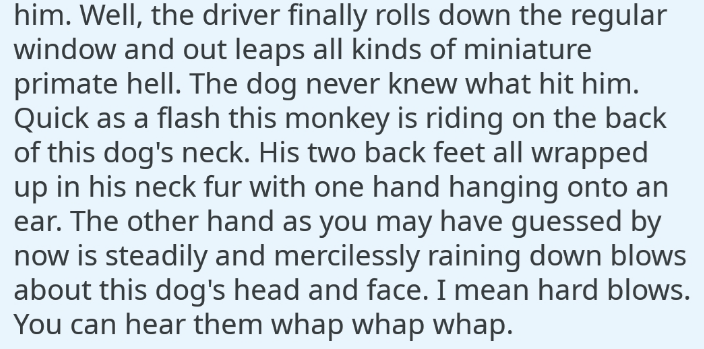 Text - him. Well, the driver finally rolls down the regular window and out leaps all kinds of miniature primate hell. The dog never knew what hit him. Quick as a flash this monkey is riding on the back of this dog's neck. His two back feet all wrapped up in his neck fur with one hand hanging onto an ear. The other hand as you may have guessed by now is steadily and mercilessly raining down blows about this dog's head and face. I mean hard blows. You can hear them whap whap whap.
