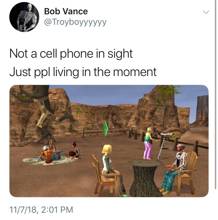 not a cell phone in sight meme about the sims video game by: @Troyboyyyyyy