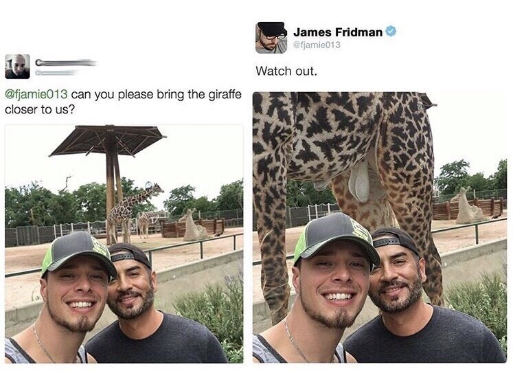 People - James Fridman @fjamie013 Watch out @fjamie013 can you please bring the giraffe closer to us?