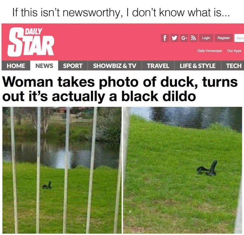 Daily Star headline about a dildo masquerading as a duck