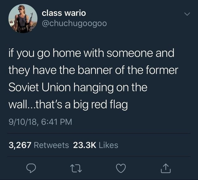 Text - class wario @chuchugoogoo if you go home with someone and they have the banner of the former Soviet Union hanging on the wall..that's a big red flag 9/10/18, 6:41 PM 3,267 Retweets 23.3K Likes