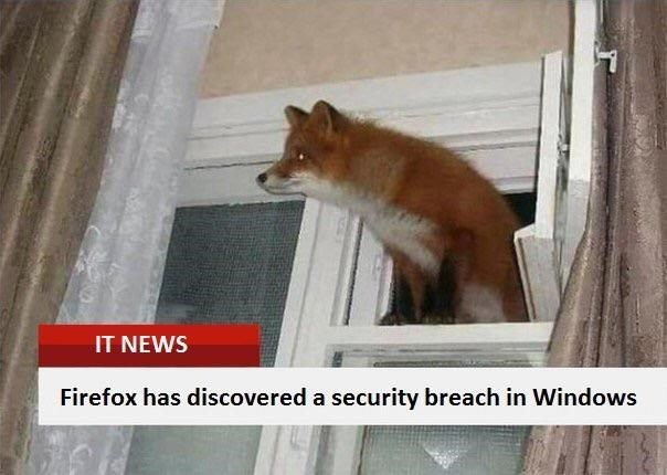 Canidae - IT NEWS Firefox has discovered a security breach in Windows