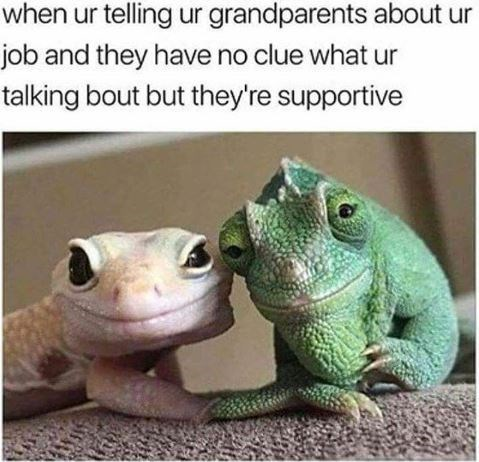 Reptile - when ur telling ur grandparents about ur job and they have no clue what ur talking bout but they're supportive
