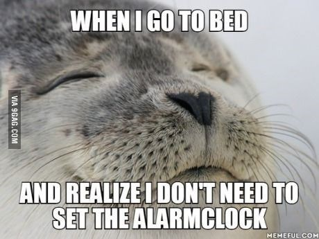 Whiskers - WHEN I GO TO BED AND REALIZE IDON'T NEED TO SET THE ALARMCLOCK MEMEFUL COM VIA 9GAG.COM
