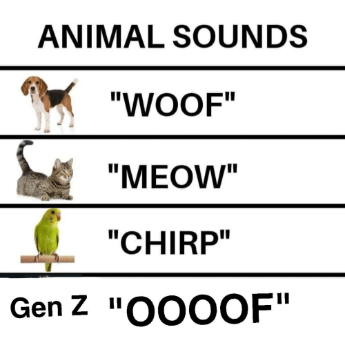 "animals sounds meme about Gen Z making ""oof"" sound"