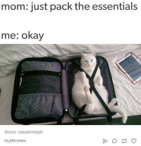 Product - mom: just pack the essentials me: okay Source: babyanimalgifs 45,299 notes